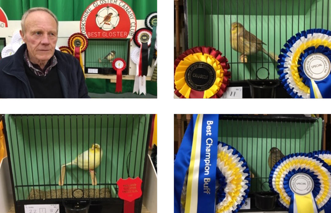 Marriage's sponsor the 'East Anglian Lizard Canary Association' Show in Wisbech, Cambridgeshire