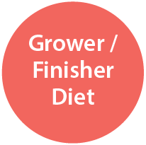 Grower / Finisher Diet