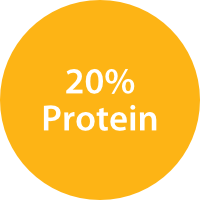20% Protein