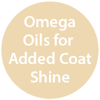 Omega Oils for Added Coat Shine