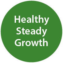 Healthy Steady Growth