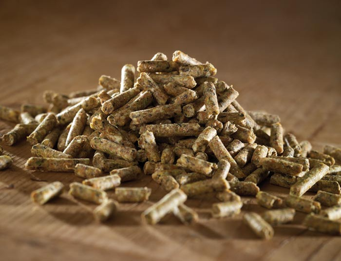 Poultry Everyday Layers Pellets