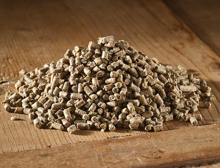 Poultry Farmyard Layers Pellets with Flubenvet