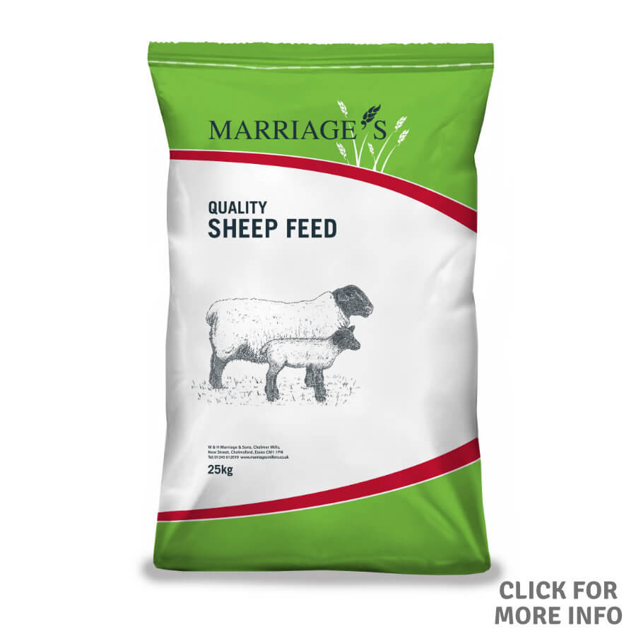 Farmyard Layers Pellets