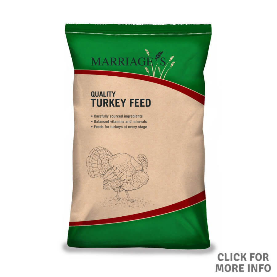 Turkey Starter Crumbs with Coccidiostat